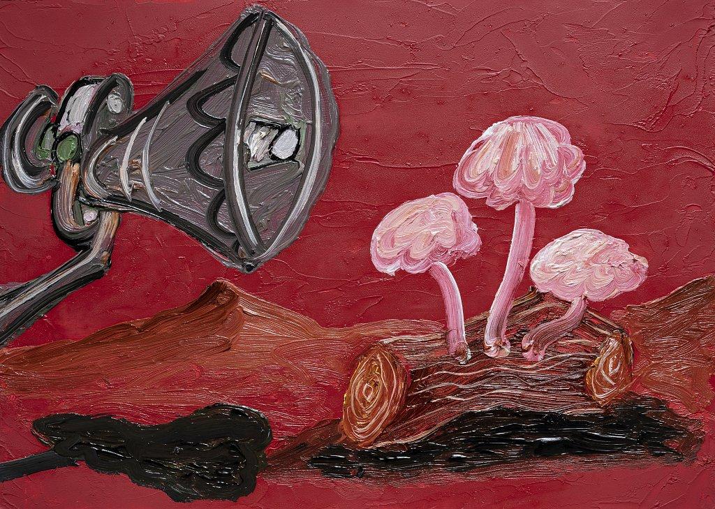 Public Address Loudspeaker and Fungi